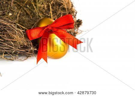 Golden easter eggs in nest isolated on white background