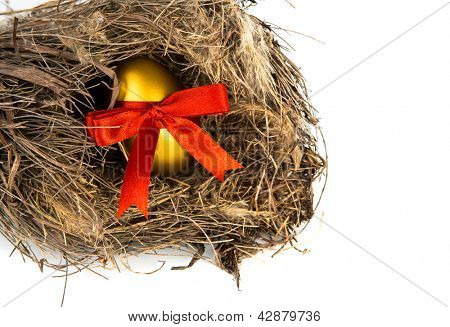 Golden easter eggs in nest isolated on white background