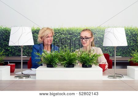 Two business women working in a green office