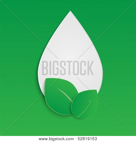 Drop And The Leaves Of Paper On A Green Background.eco Background.vector