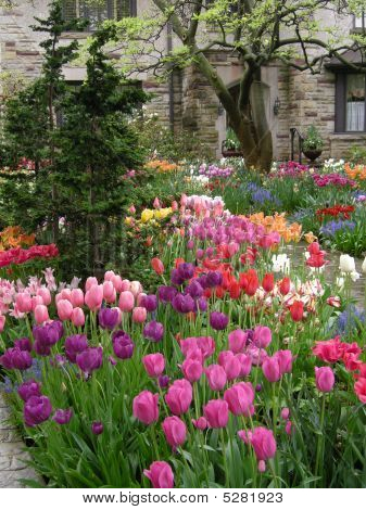 House With Colorful Spring Garden