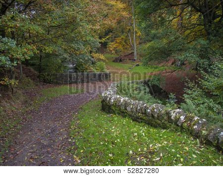dry stone wall and old stone packhorse bridge in yorkshire woodland