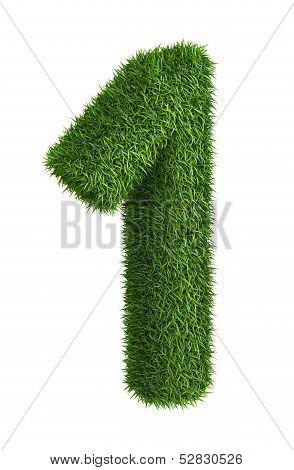 Natural grass number 1