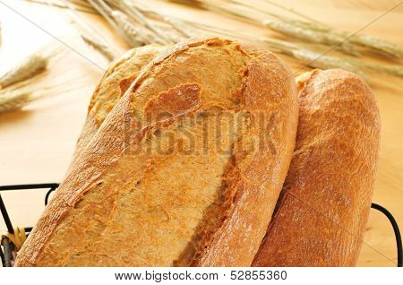 closeup of some demi baguettes or bread rolls in a basket, with wheat ears in the background