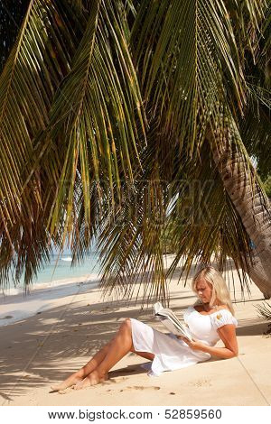 Women Reading Under Palm Tree
