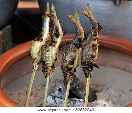 Fish On Skewer, Barbecue Fish