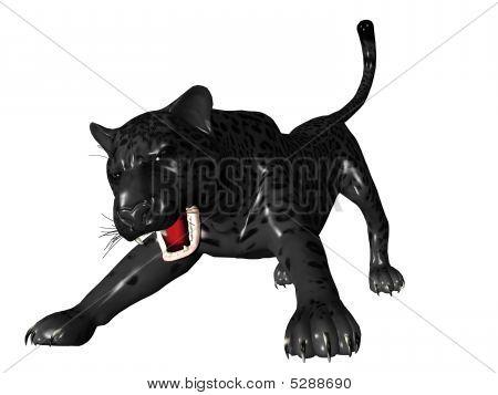 Agressive Black Panther Front View