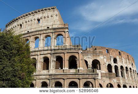 Roman Colosseum Landscape