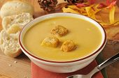 picture of butternut  - A bowl of butternut squash soup with croutons - JPG