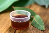 stock photo of cough syrup  - Eucalyptus cough syrup in medicine cup with fresh Eucalyptus leaves  - JPG