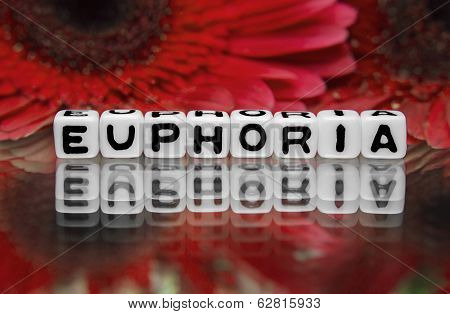 Euphoria Text Message With Red Flowers