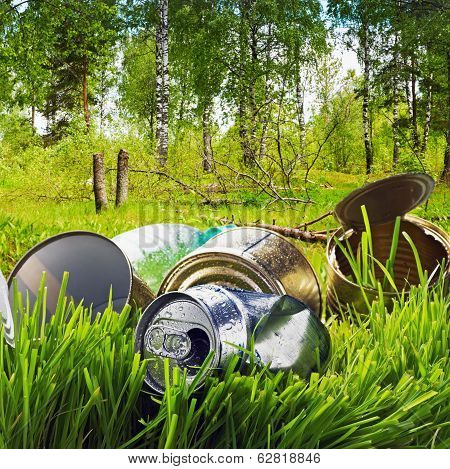 Forest Contaminated Waste And Garbage