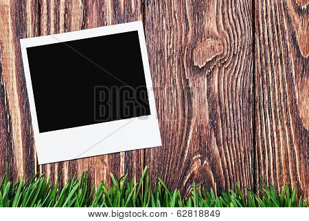 Photoframe On The Background Of Grass