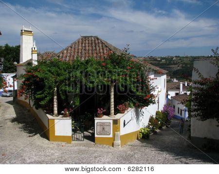 Tradicional House