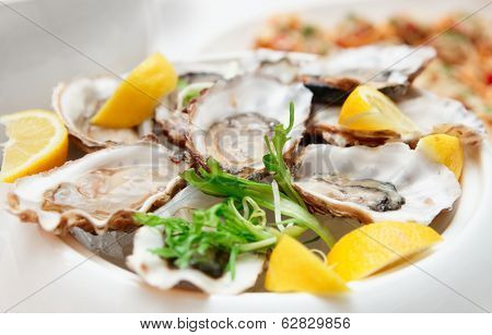 Fresh opened oysters on restaurant table