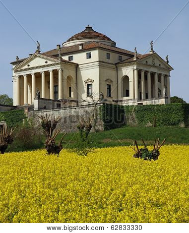 Villa La Rotonda With Yellow Flower Field Of Rapeseed In Vicenza 15