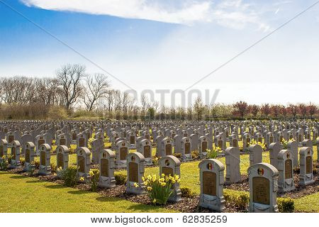 Cemetery Belgian Soldiers World War One