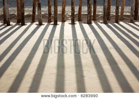 Pilings on beach
