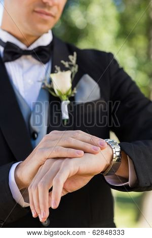 Midsection of bridegroom checking time in garden