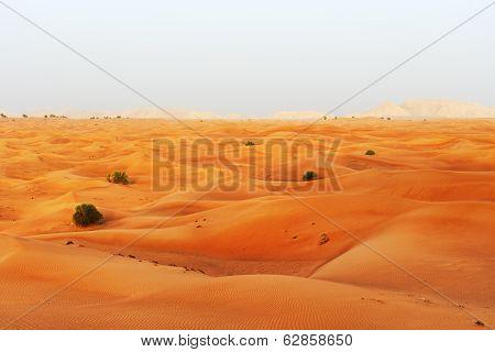 The Desert During Sunset, Dubai, Uae