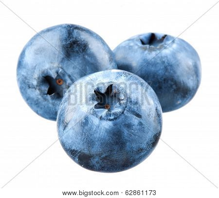 Blueberry. Three Bilberries Isolated On White