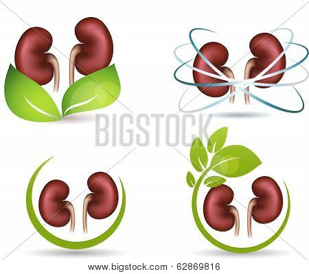 Kidneys Protection Symbol Collection