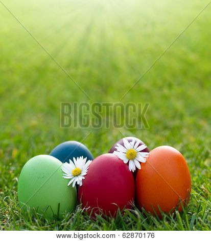 Colorful Easter Egg In The Fresh Spring Grass