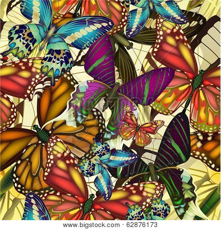 Seamless pattern colorful butterflies.  EPS10