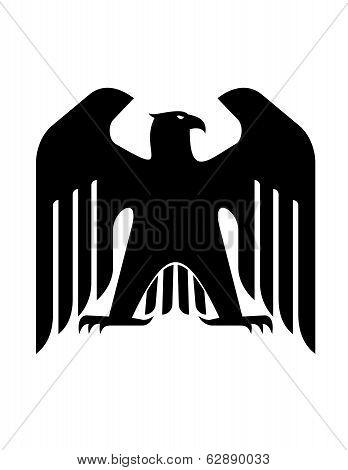 Majestic black eagle