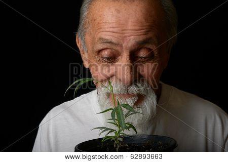 Nice Happy Image Of a Senior man who grows his own medicine