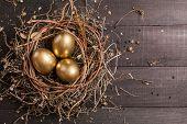 stock photo of bird egg  - Golden eggs in nest on dark vintage wooden background - JPG