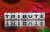 foto of tribute  - Red tribute text with flowers in the background - JPG