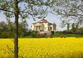 foto of neo-classic  - Magnificent palladian Villa called LA ROTONDA in neo - JPG
