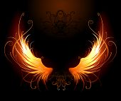 foto of fiery  - artistically painted fiery wings on a black background - JPG