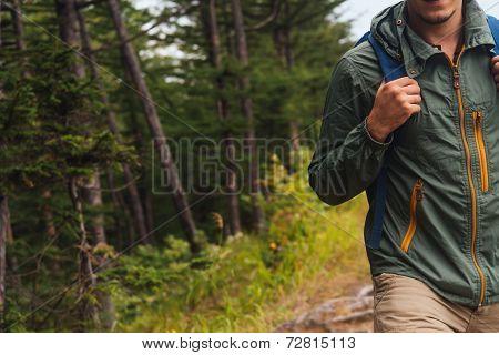 Hiker Man Walking In Summer Forest