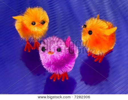 3 Colourful Spring Chicks