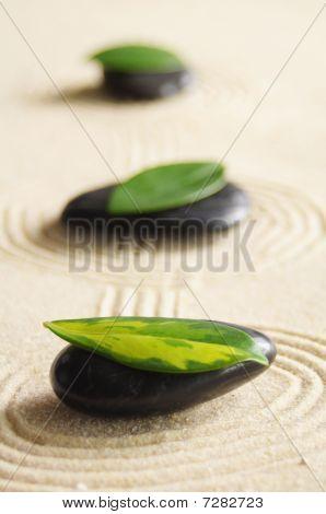 Zen Still Life