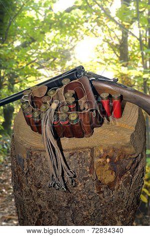 Shotgun And Its Cartridges