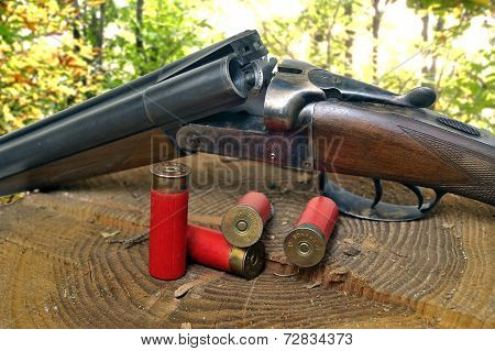 Shotgun And Its Cartridges