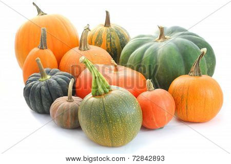Pumpkin And Squash Collection