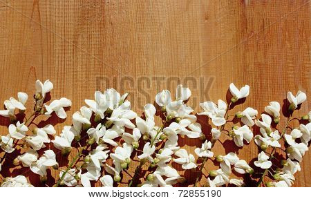 White Wisteria Spring Flowers On Wood