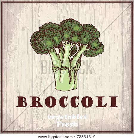 Fresh Vegetables Sketch Background. Vintage Hand Drawing Illustration Of A Broccoli