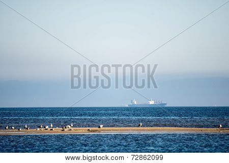 Transportation Ship On The Horizon With Seagulls In Foreground