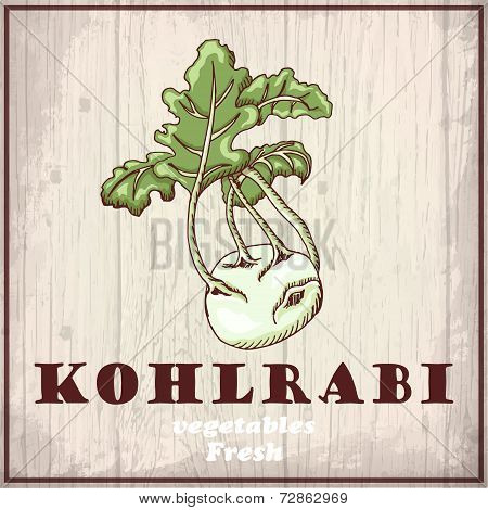 Fresh Vegetables Sketch Background. Vintage Hand Drawing Illustration Of A Kohlrabi