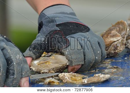 Close up of oyster being prepared