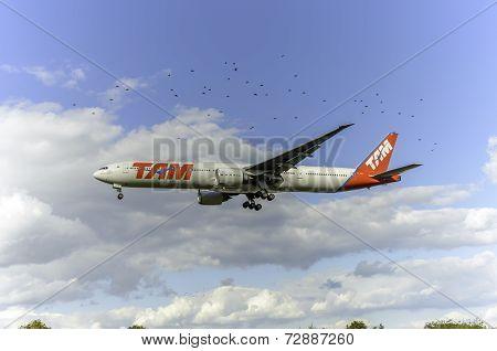 TAM Linhas Aereas aircraft PT-MUB