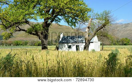 Little Farm House
