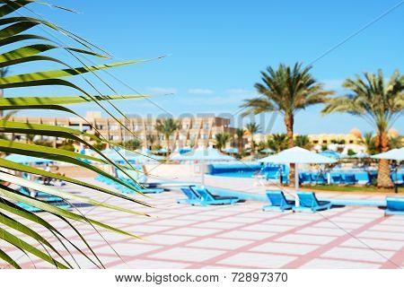 The Frond Of Palm And Swimming Pool At Luxury Hotel, Hurghada, Egypt