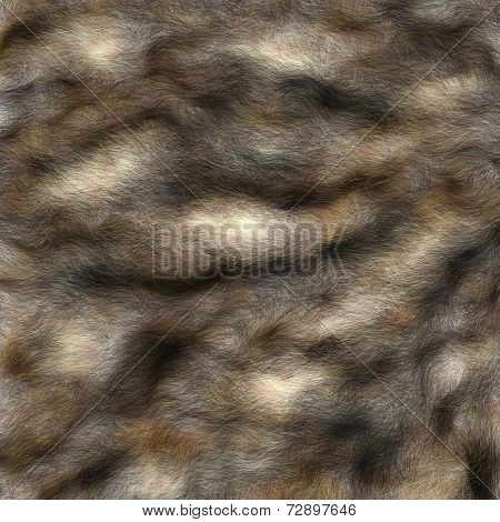 Fur pattern,abstract.