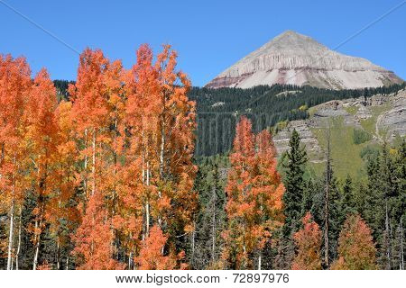 Engineer Mountain and Aspen